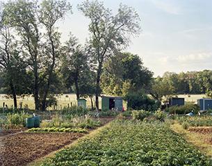 DOMINANTE VERTE <br/> Les Jardins Familiaux
